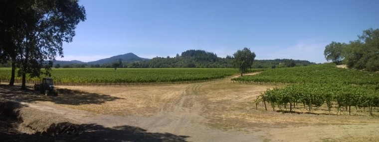 Beautiful Sonoma County, home of Vineman 70.3